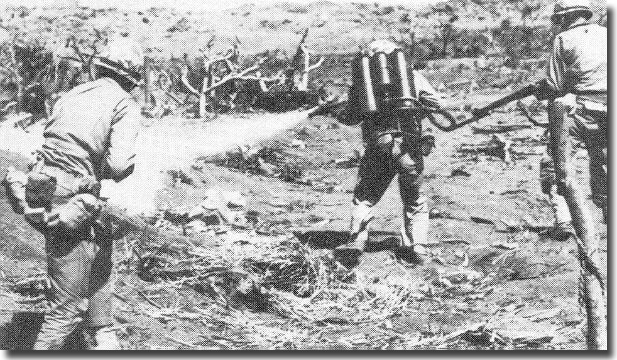 Flame throwers at work on Iwo Jima