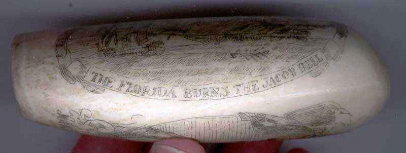Florida burns the Jacob Bell whale tooth scrimshaw carving click for bigger picture