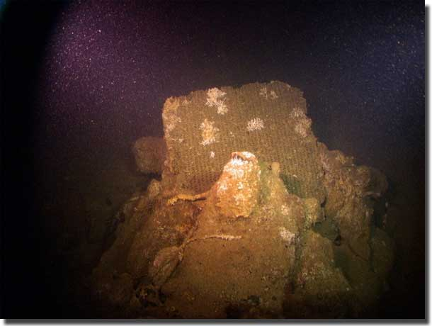 Photo of radiator from a vehicle in the sunken William Dawes.