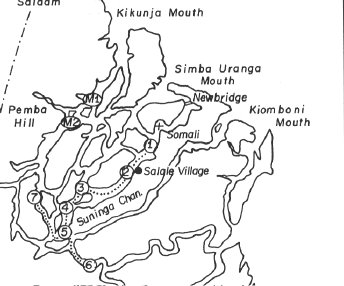 Konigberg's movements in the Rifiji River Delta