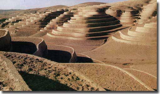 Terraces built over the Loess plateau